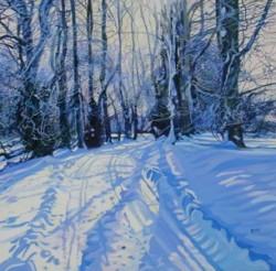 Winter Shadows - Danny Ross