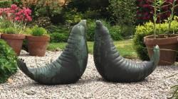 Elephant Seals (pair)