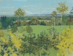 Gorse and Young Trees Above Altyre