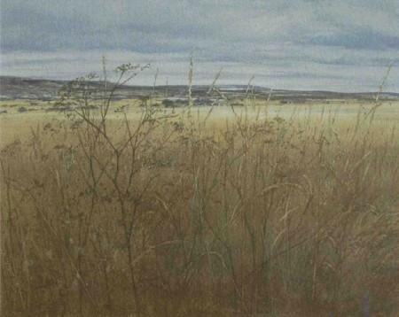 September Field Edge - D.E.Johnston
