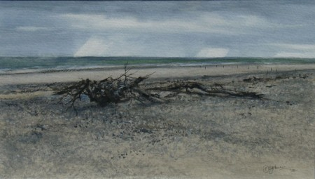 After the Storm, St Cyrus
