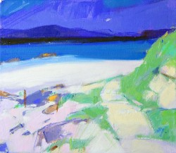 Shoreline Path, Iona