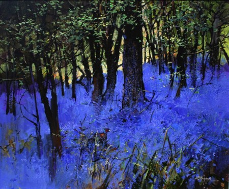 Bluebells and Pheasant