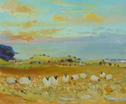 Sheep in the Turnip Field