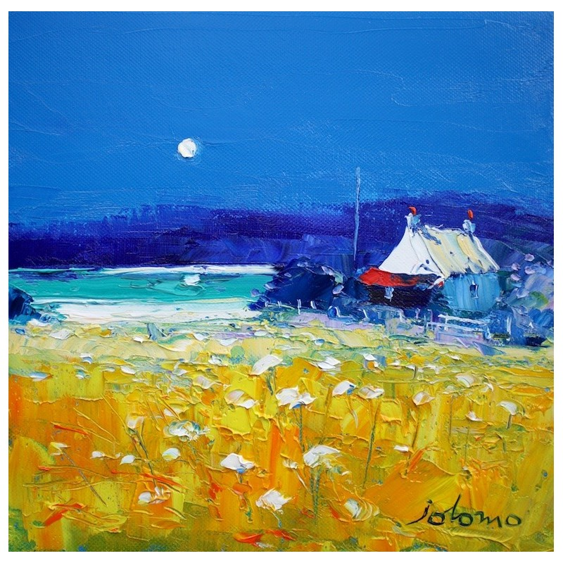 A summer moonrise Isle of Gigha