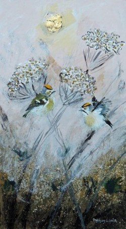 Cow Parsley Goldcrests