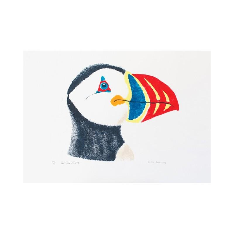 Sea Parrot