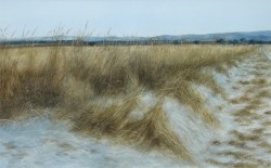 A Winter's Field Edge, the Mearns