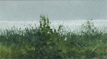 At the Sea's Edge