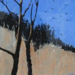 Late Winter Sun — Crow Wood