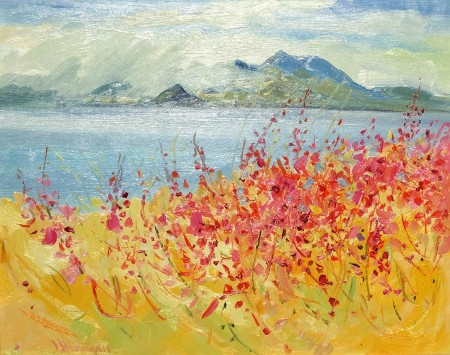 Willowherb (Arran and Holy Island)