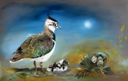 Lapwing with Her Chick