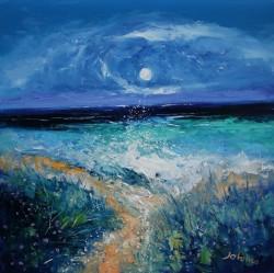 St Columba's Beach Path Through The Mermaids Tears Iona