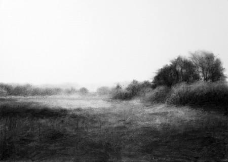 Morayshire Landscape