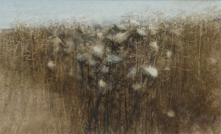 Thistledown and Field Edge