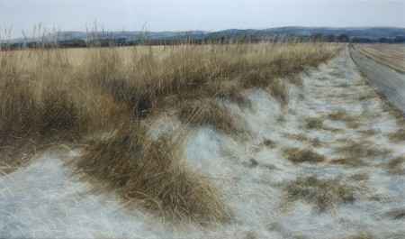 Midwinter Field Edge, the Mearns