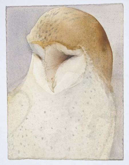 Parliament of Owls: Barn