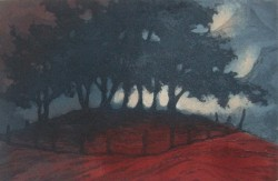 Red Copse