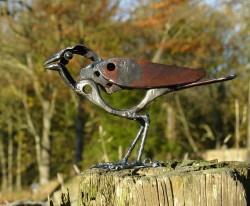 Plump Bird