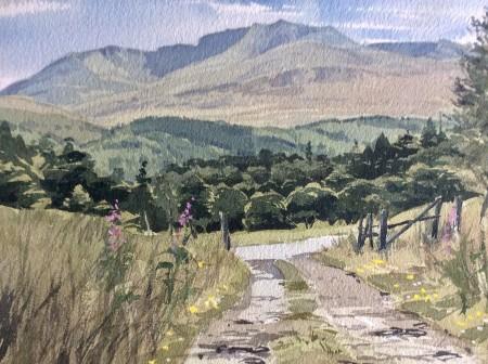 Bright Lochnagar by Donald Murray