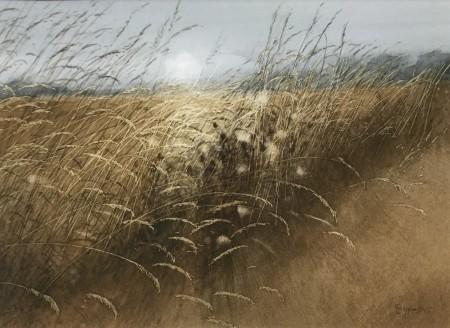 September Thistledown by David E. Johnston