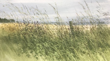 A Late Summer Field Edge by David E Johnston