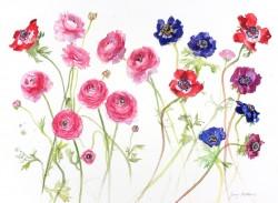 Flowers from Gail by Jenny Matthews