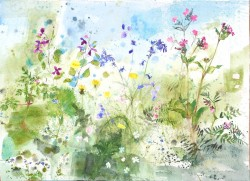 Flowers From the River by Jenny Matthews