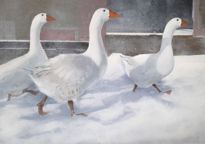 Marching Geese by Winifred Fergus