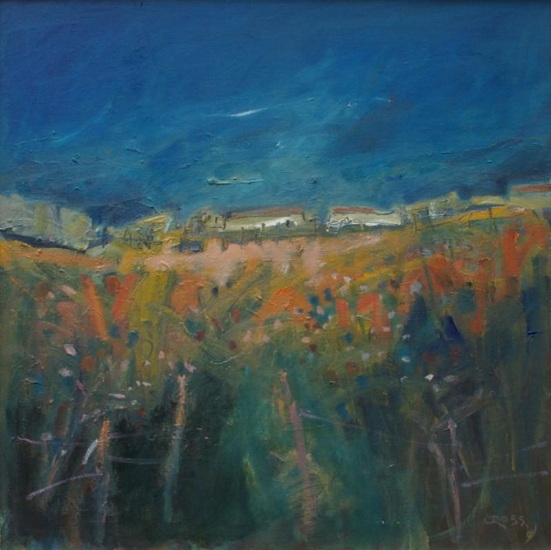 Dark Sky by Andy Cross