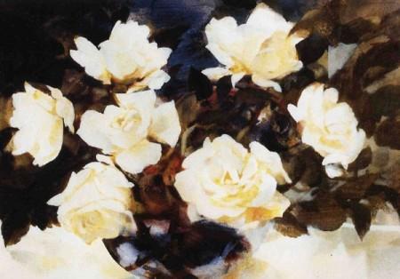 White Roses - Moira Ferrier RSW