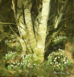 Snowdrops in the Snow - Gillian Goodheir