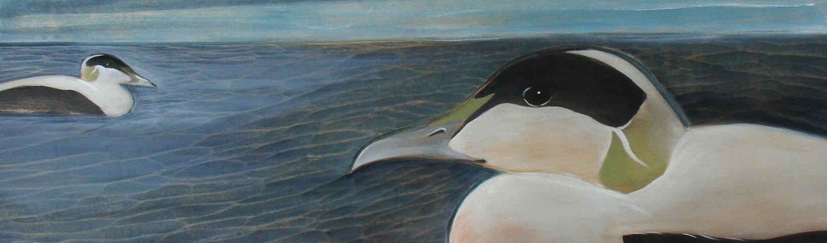 Kathryn O'Kell —Iceland Birds 2017