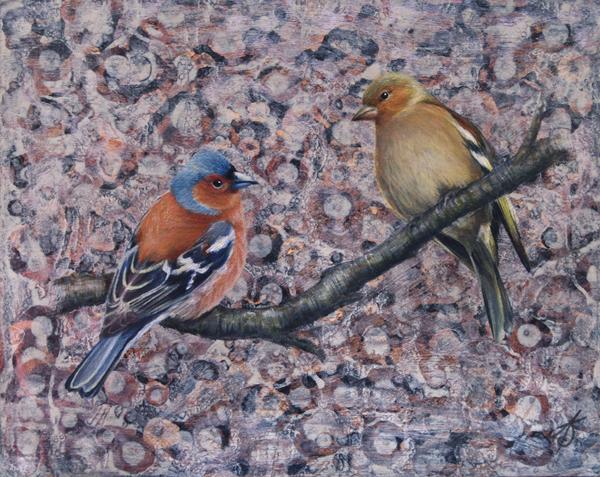 Chaffinches by Alanda Calmus