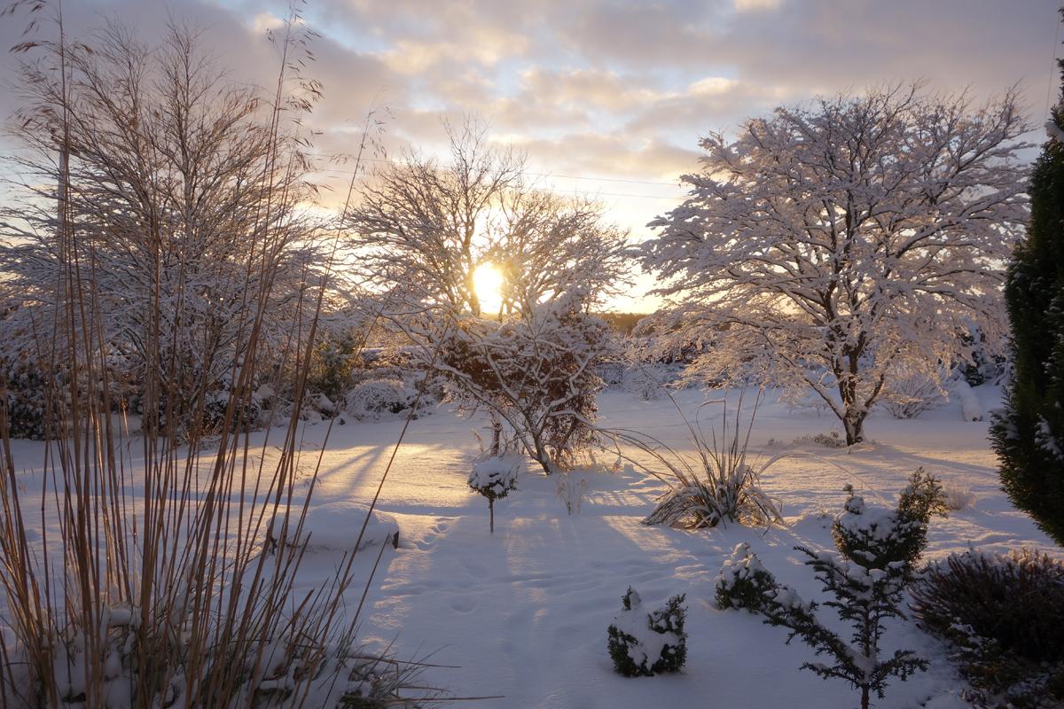 Tolquhon garden in the snow