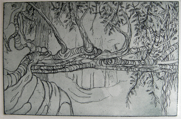 Kitty Watt Trees at Crathes line print