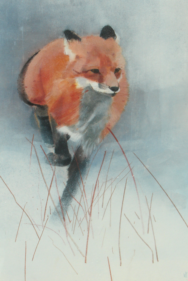 Winter Visitor by WINIFRED FERGUS